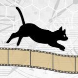 【Unity】Cinemachineのカメラ切替えが数フレーム遅れる問題への対処